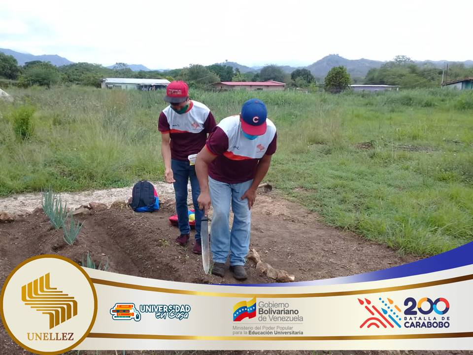 Estudiantes de Lima Blanco donan cosecha.